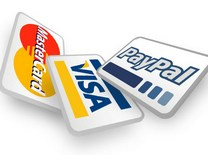 Payments systems: paypal